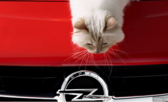 HORIZONT-Artikel zur Opel-Kampagne #CorsaChoupette