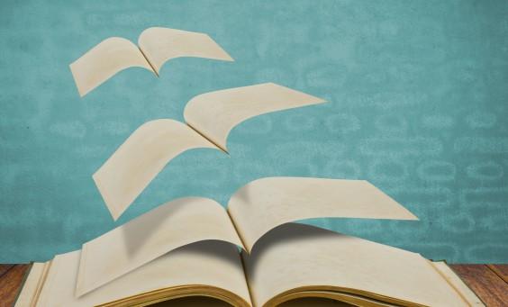 5 Tipps zu Storytelling mit Snack-Content