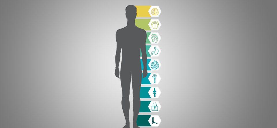 9 Eigenschaften von Snack-Content - der Blog-Header von koelnkomm