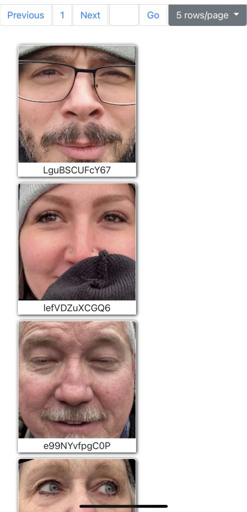 Kommt man auf die Website, so sieht man eine Liste von Gesichtern, die aus Videos der Kapitolerstürmung extrahiert wurden.